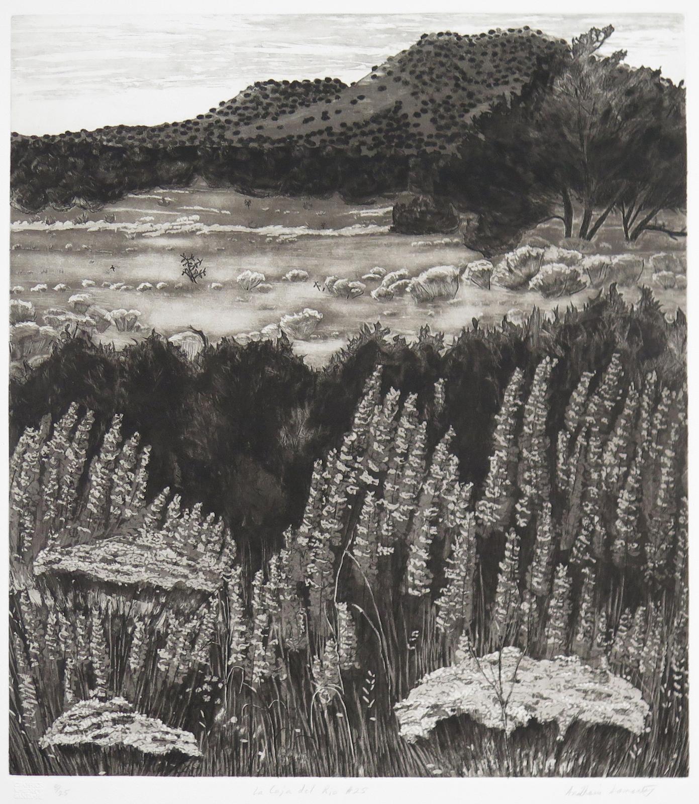 AnaMaria Samaniego, La Caja del Rio #24