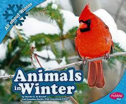 Stories & Music in the Sky - ANIMALS IN WINTER