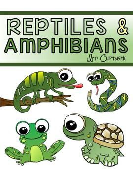 Stories & Music in the Sky Virtual Story Time - Amphibians & Reptiles