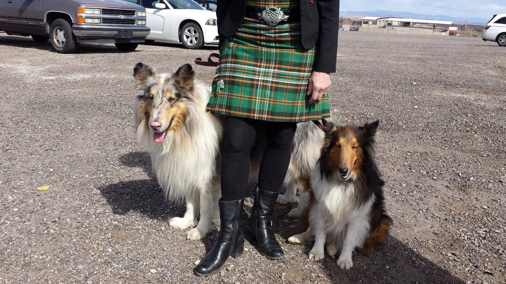 two dogs and person in a kilt