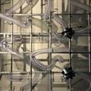 Elevation Station Wind Tunnel.jpg