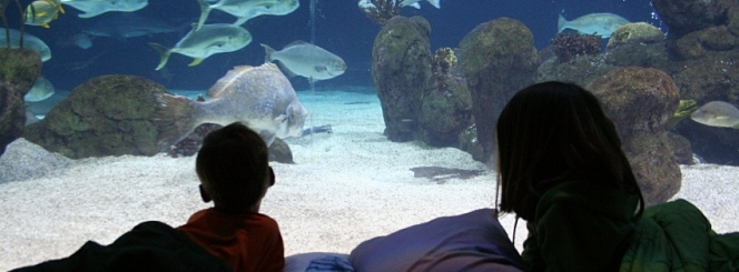caption:Learn about the BioPark's Master Plan and its proposed changes.