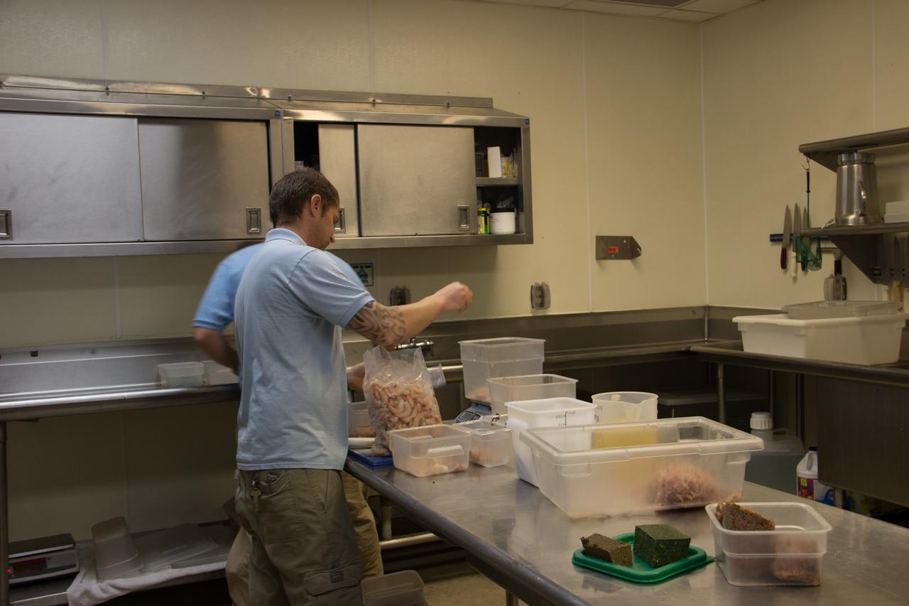 Presparing aquarium food