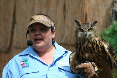Animal Encounters Show