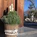 POTW - Bamboo Pine Plum Blossoms