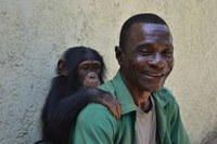 caption:Abidjan keeper with young chimpanzee