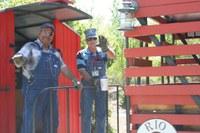 Staff Train