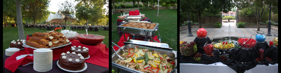 "Use ""A Taste of Wild Catering Services"" for your next corporate event."