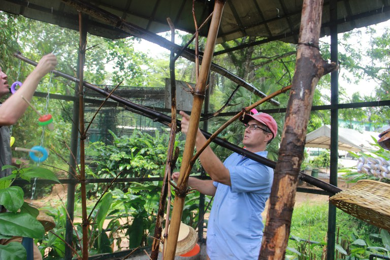 Chaz Moxley hanging some bird enrichment at Zoo National d'Abidjan during the 2017 trip.