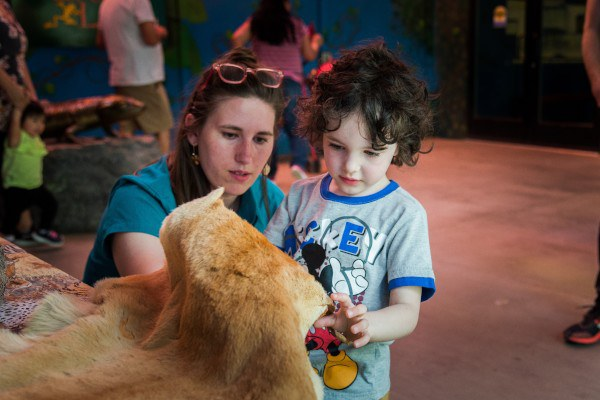 Zookeeper and child feeling an animal pelt