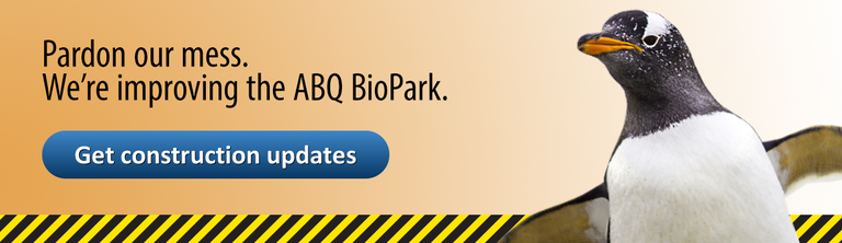 BioPark Construction Homepage Banner