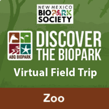 Discover the BioPark Icon Zoo Programs