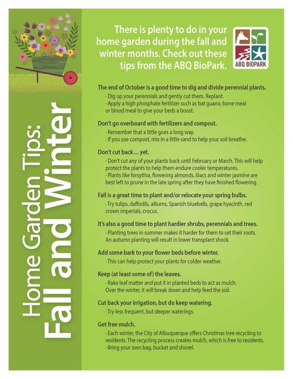Fall Garden Tips Teaser