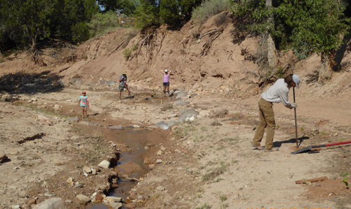 Ghost Ranch restoration project 2018. BioPark staff working.