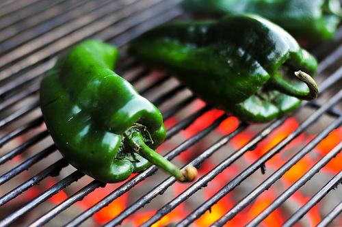 Green Chile joshbousel