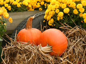 Harvest Days for Events Page