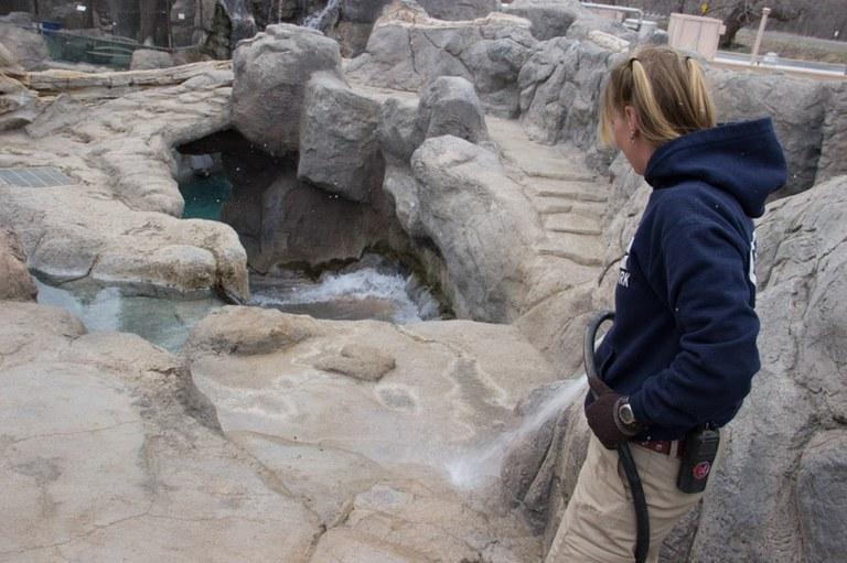 Jenn cleaning polar bear exhibit
