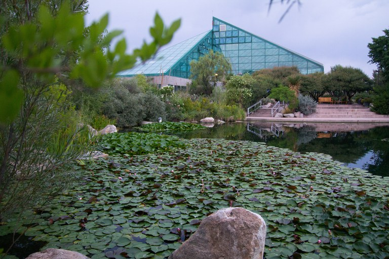 Botanic Garden Tile