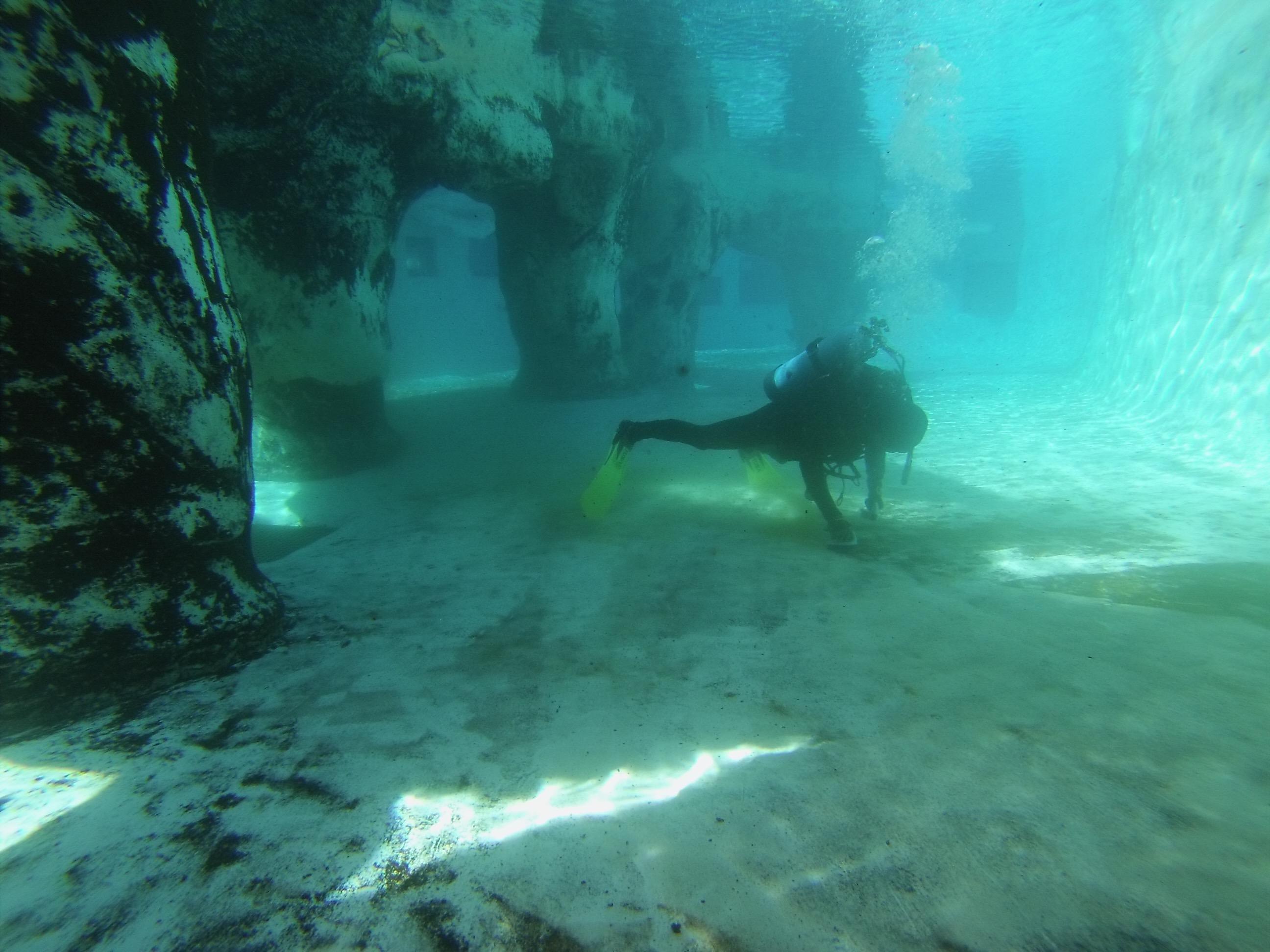 Diver scrubbing seals