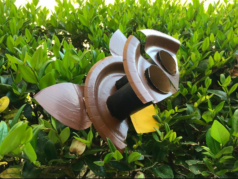 Owl Craft 1 BioPark Connect Raptors