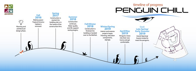 Penguin Chill Timeline - Updated Fall 2018