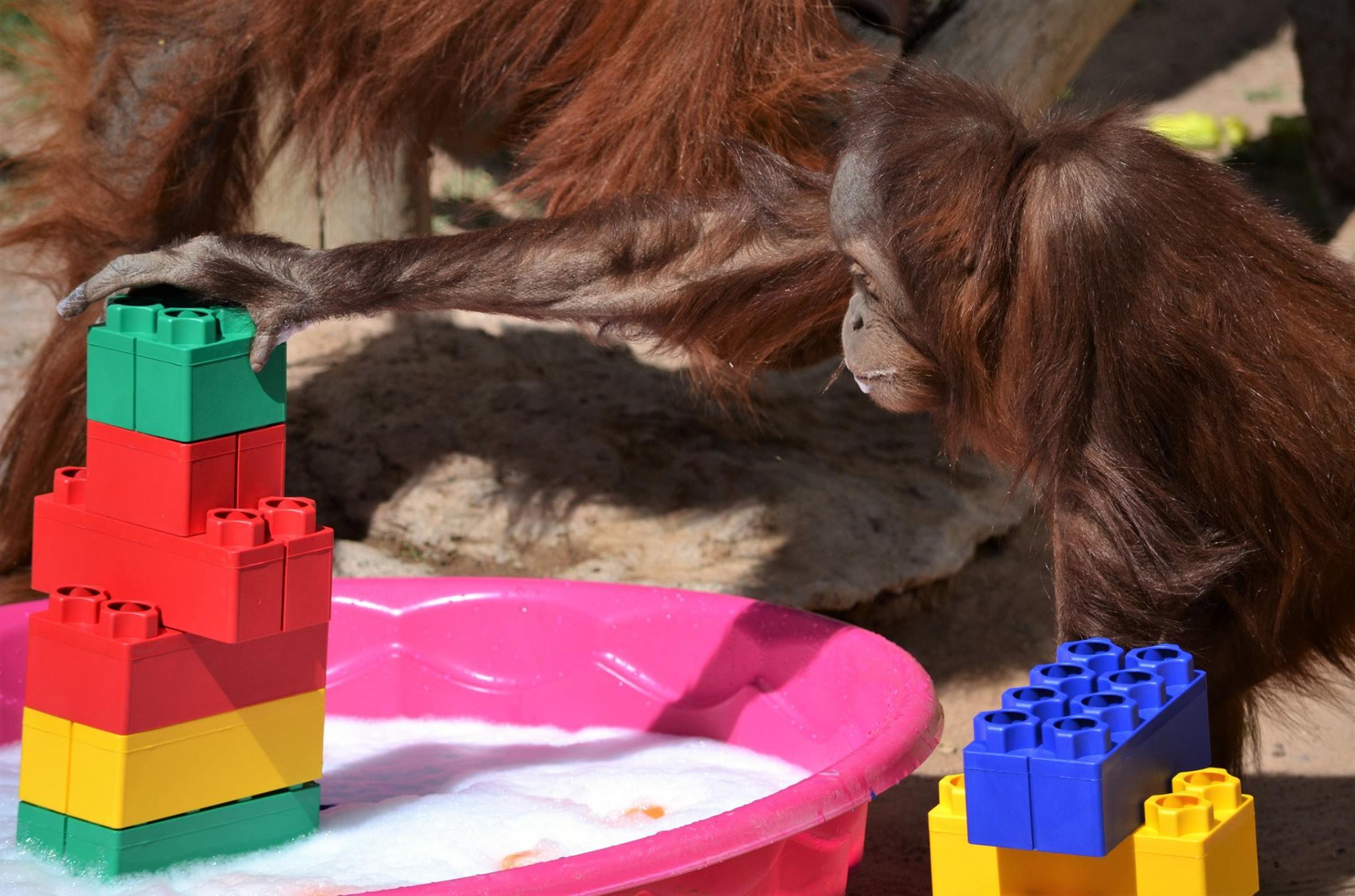 Pixel Orangutan Legos