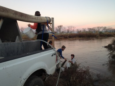 About 89,000 fish released in November