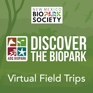 Discover the BioPark Icon General