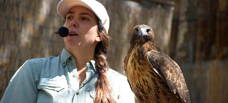 Garden Tours Zoo Animal Encounters
