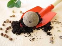 Make a Native Plant Seed Ball