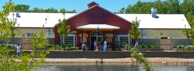 Fishing at Tingley Beach