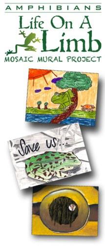 Amphibian Mosiac Mural Project