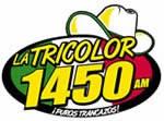 Tricolor logo