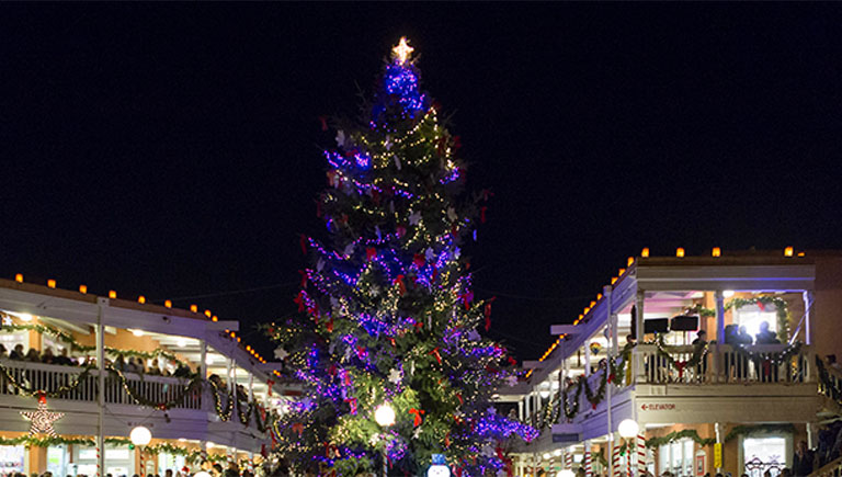 The City's largest Christmas Tree illuminated in Plaza Don Luis in Old Town.