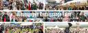 2017 Ren Fair Collage