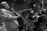 Bobcats Trio- Photo