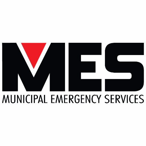 MES - Logo