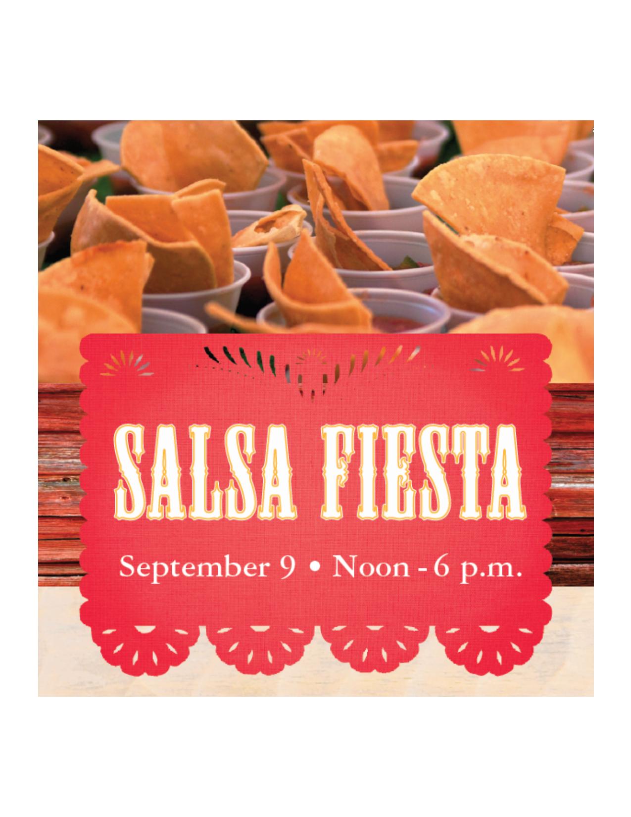 2017 Salsa Fiesta Banner