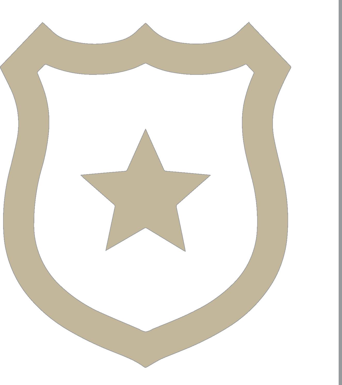 APD Badge Icon