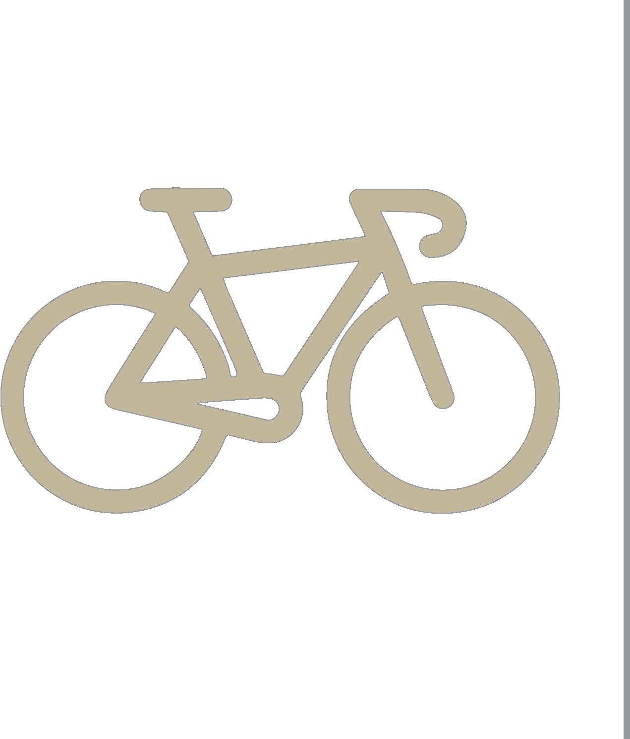 Bikes and Pedestrians Icon