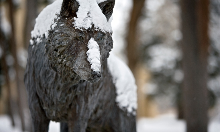 A Lobo sculpture in the snow.