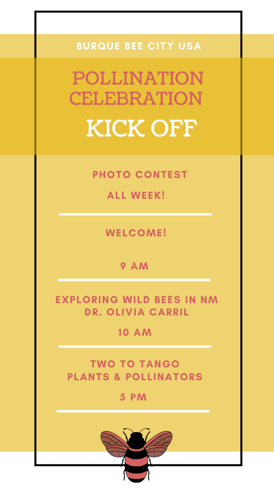 Day One Schedule of the Pollination Celebration