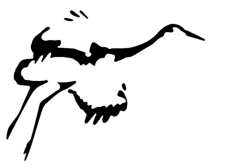 Sandhill Crane drawing