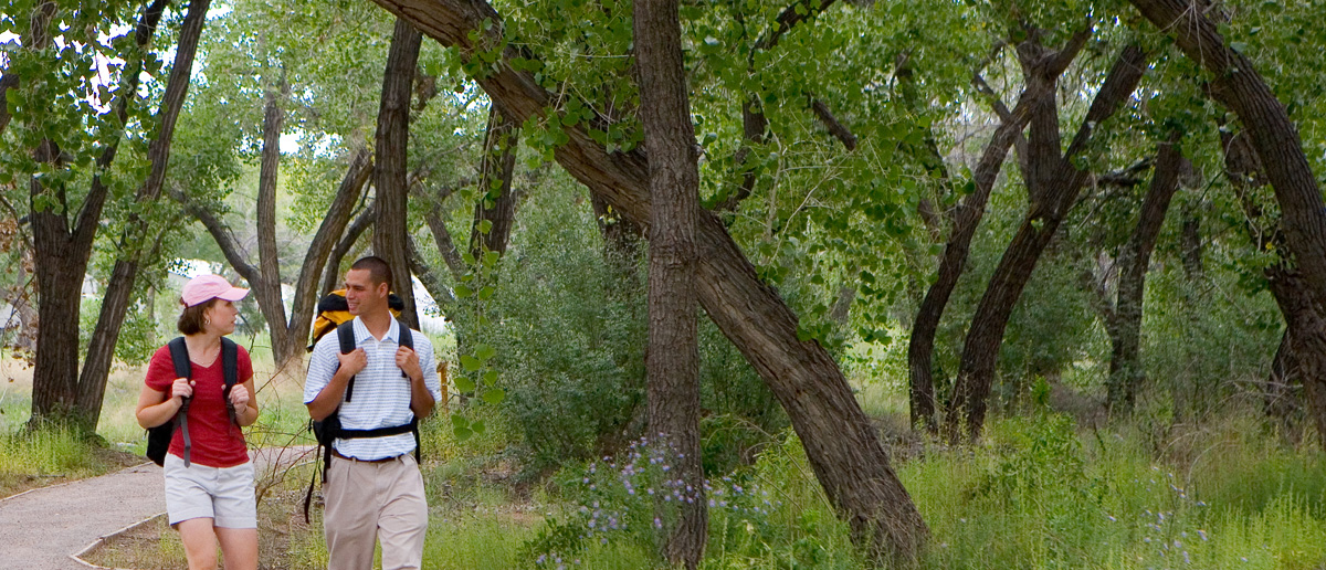 A photo of a couple walking along a Bosque hiking trail while chatting.