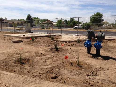 Irrigation @ Academy Hills Park
