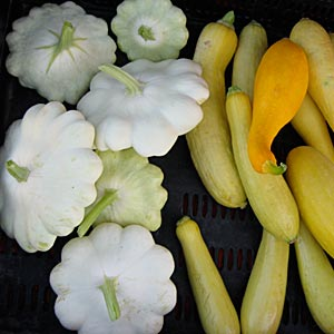 Local Produce at Uptown Growers Market