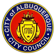 Special Procedures for March 1, 2021 City Council Meeting