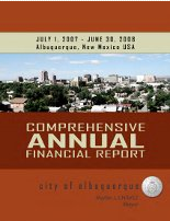 Comprehensive Annual Financial Report 2008