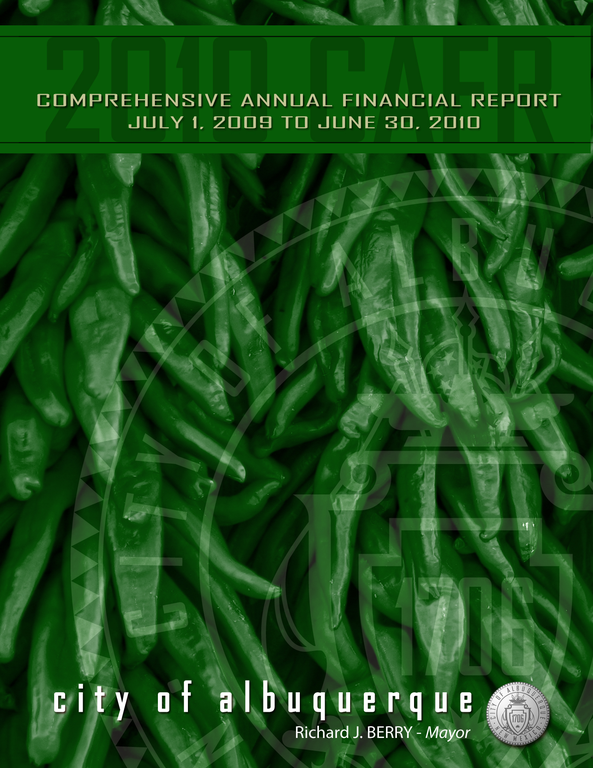 Comprehensive Annual Financial Report 2010