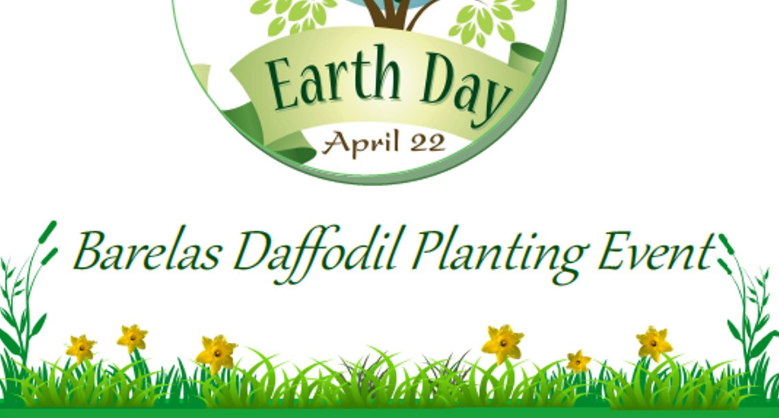 The Barelas Daffodil Planting Event 2019 Flier.